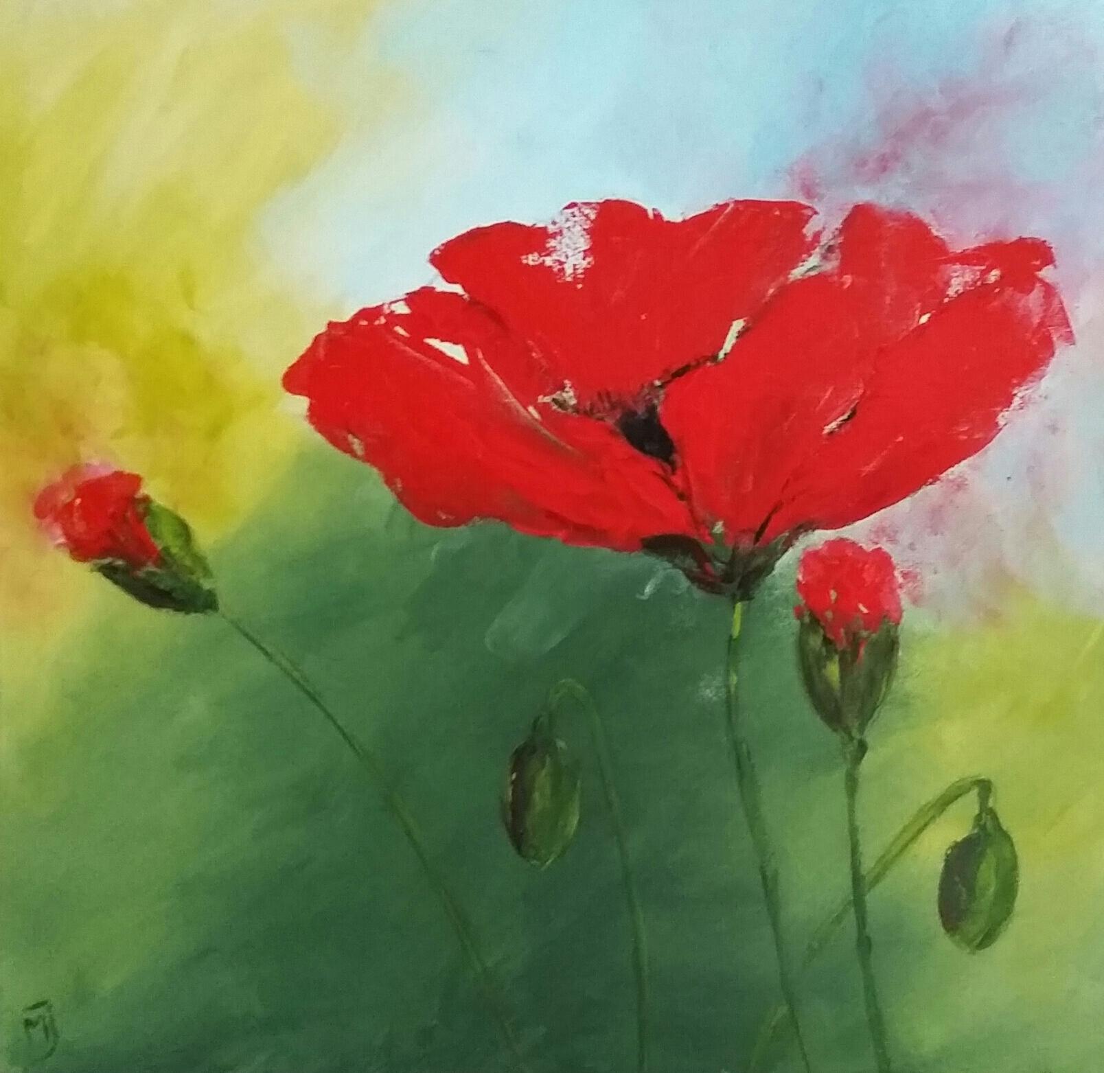 Poppies | Natuur | 40x40 | Canvas | Niet Meer Beschikbaar