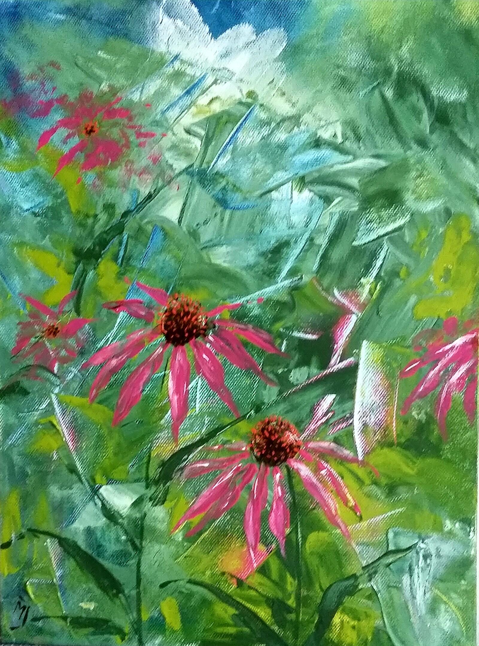 Echinacea Purpurea | Natuur | 30x40 | Canvas (niet beschikbaar)